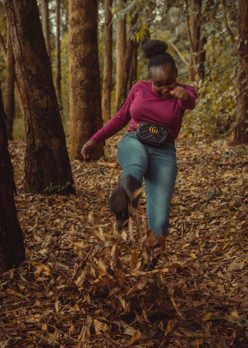 Foto d'estoc gratuïta de bosc, boscos, fer una puntada, gaudir