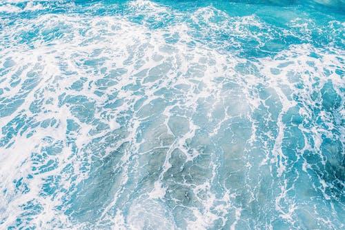 Free stock photo of background, blog, blue, holidays