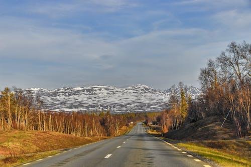 Ilmainen kuvapankkikuva tunnisteilla lumi, olemme, rauhallinen, ruotsi