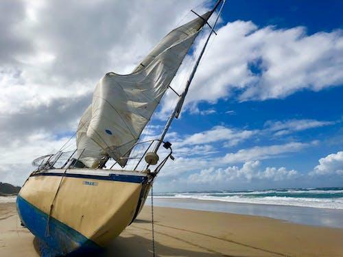 Бесплатное стоковое фото с Австралия, берег, водный транспорт, квинсленда