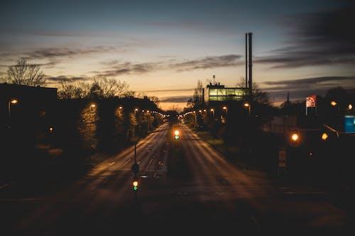 Foto d'estoc gratuïta de alba, Alemanya, arbre, atmosfèric