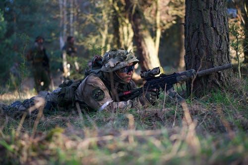 Gratis stockfoto met ammunitie, Bos, bossen, camouflage