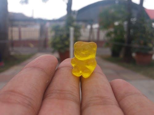 Základová fotografie zdarma na téma cukroví, děti, gumoví medvídci, ruka