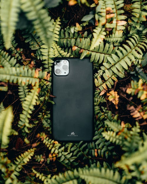 Black Samsung Smartphone on Brown and Green Plant