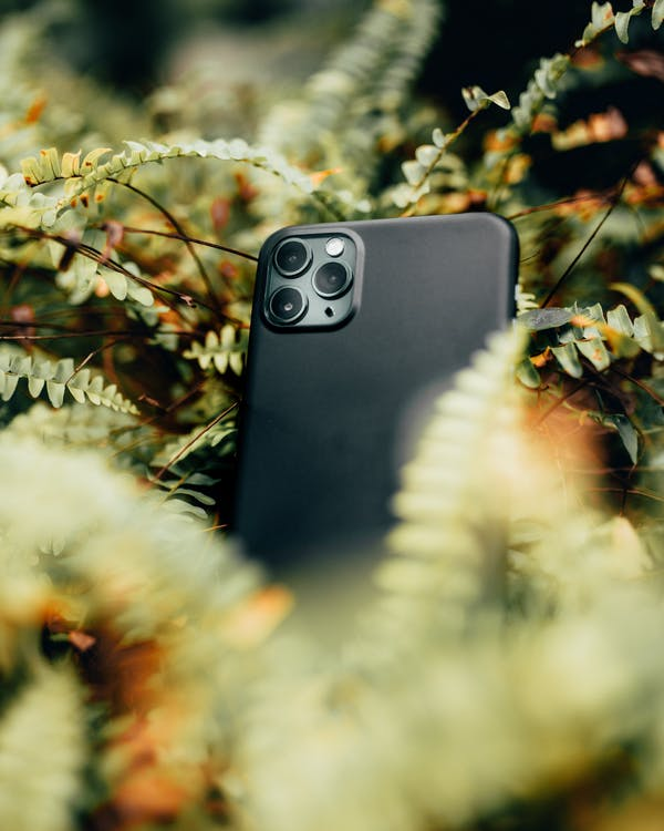 Black Smartphone Surrounded With Plants