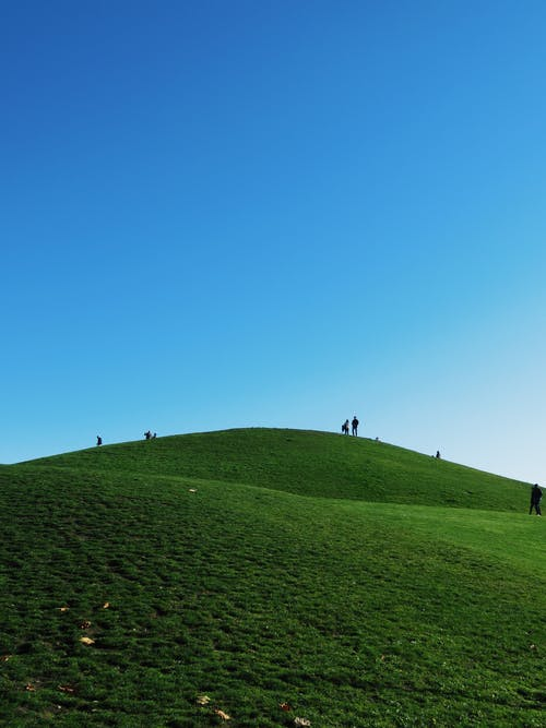 People Walking on Green Grass Field Under Blue Sky