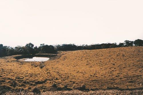 Foto stok gratis alam, gunung, lansekap, pemandangan musim dingin