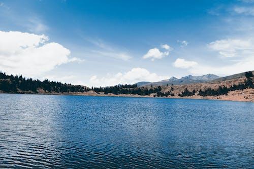 Foto stok gratis air, alam, gunung, kebun