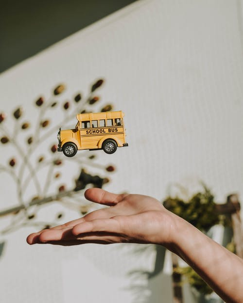 Person Holding Yellow and Black School Bus Toy
