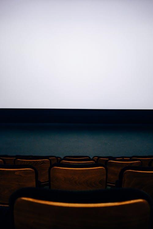 Foto d'estoc gratuïta de auditori, buit, cadires