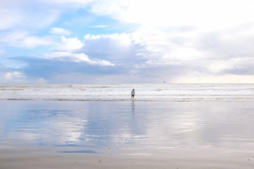경치가 좋은, 낮, 모래사장, 물의 무료 스톡 사진