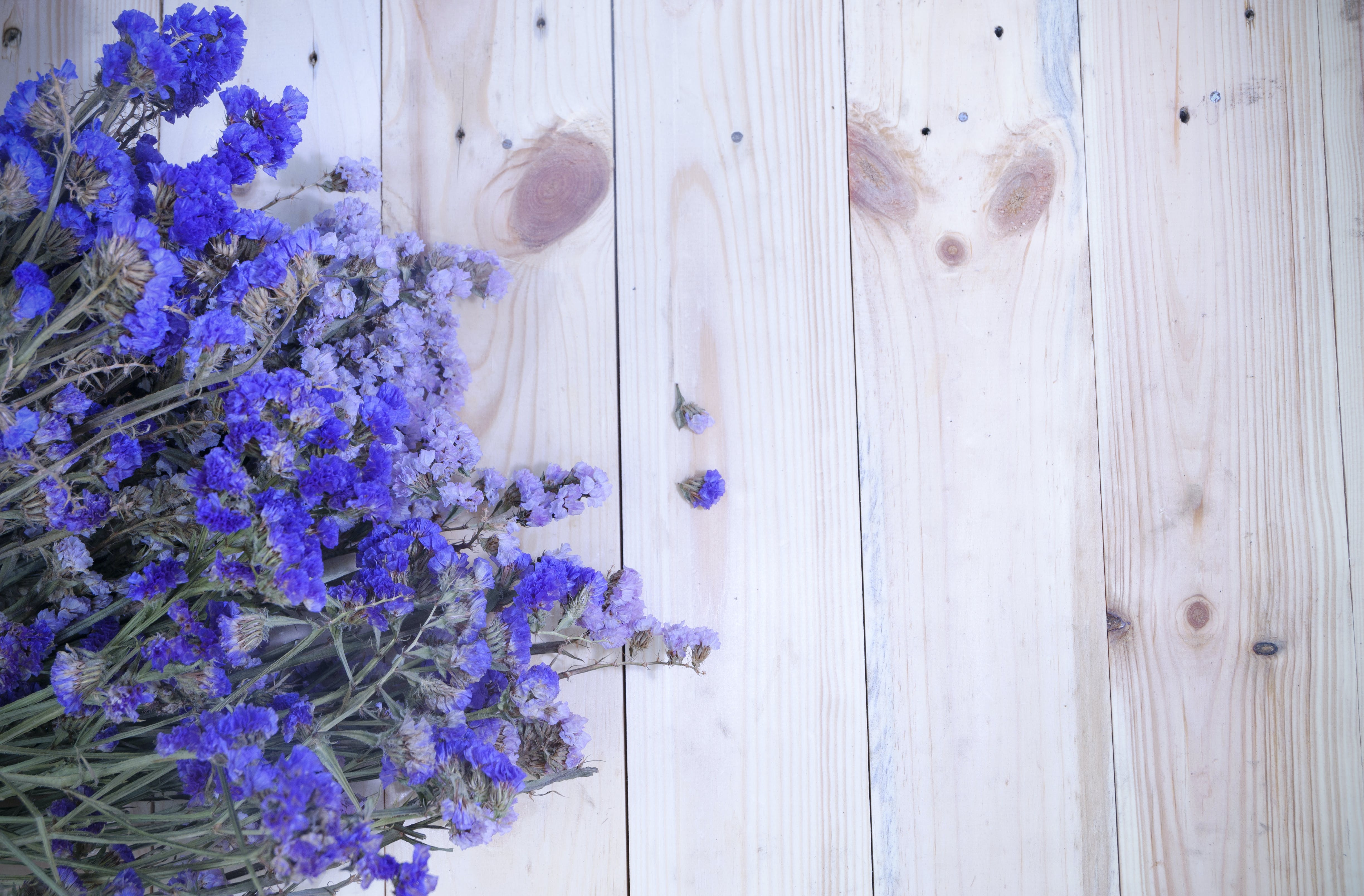 Flat Lay Photography of Purple Clustered Flowers on Wood Plank