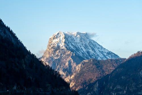 Darmowe zdjęcie z galerii z alpy, austria, cel, drzewa