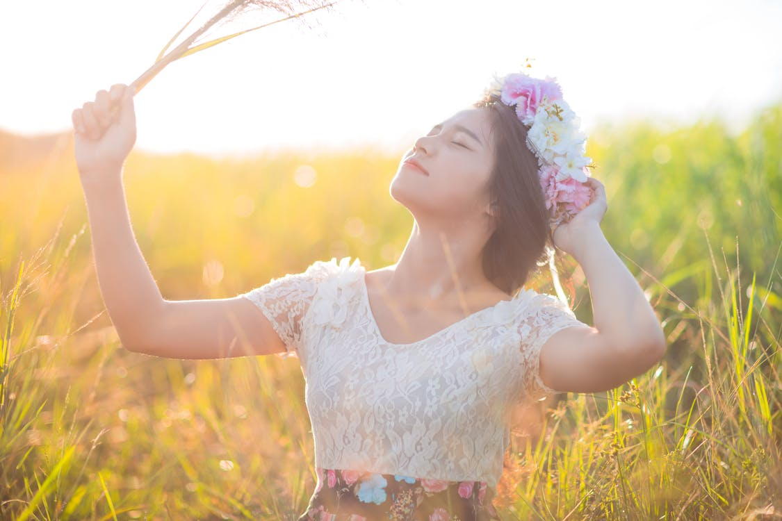 bane, blomster, dagslys