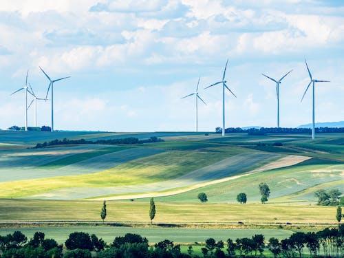 Darmowe zdjęcie z galerii z alternatywa, austria, chmury, drzewo