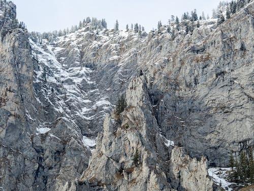 Photos gratuites de altitude, arbres, autriche, cailloux