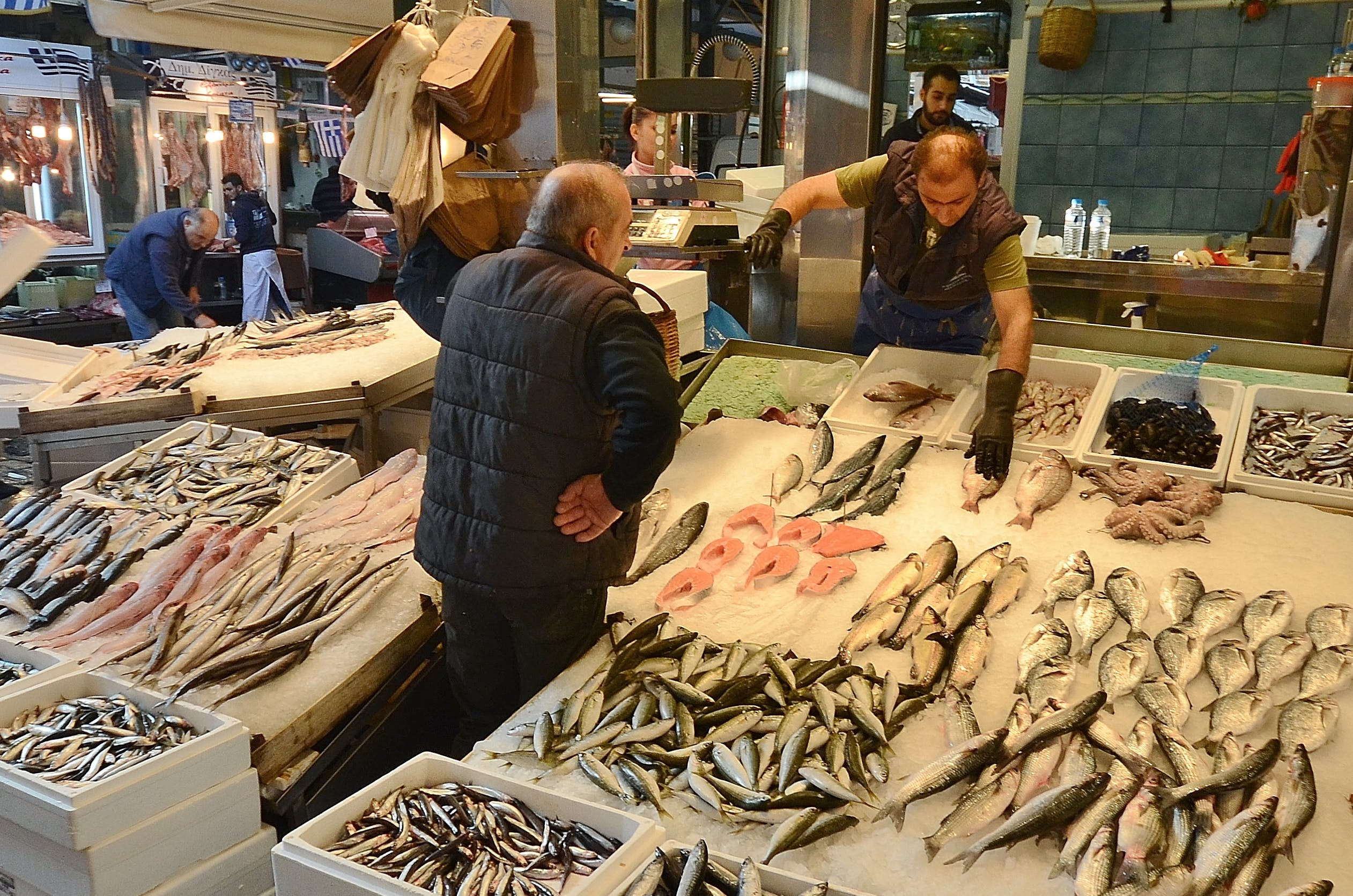 Free stock photo of people, fish, fish market, marketplace