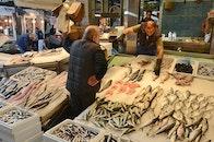 people, fish, fish market