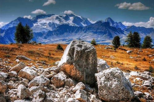 Gray Rocks on Grass Field