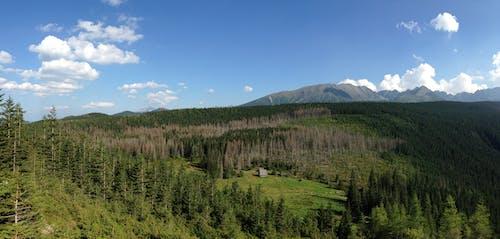 景觀 的 免費圖庫相片