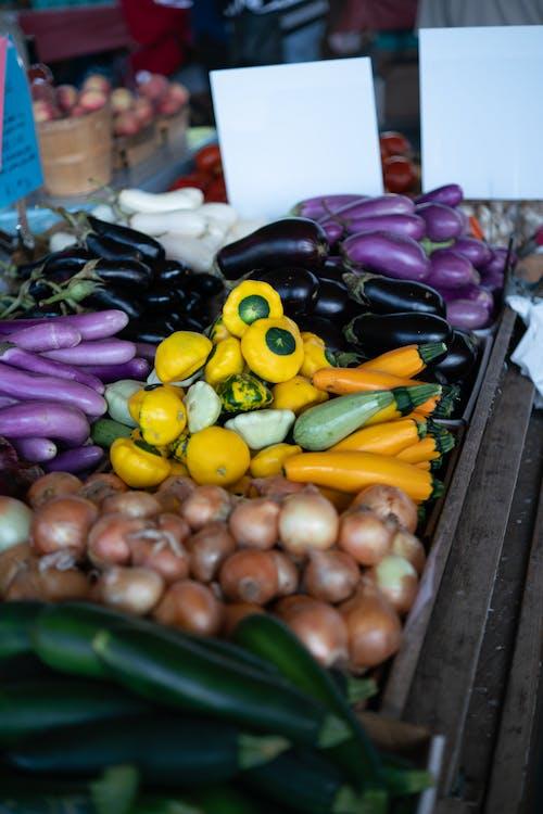 Free stock photo of farmer's market, farmers, food, fresh vegetable