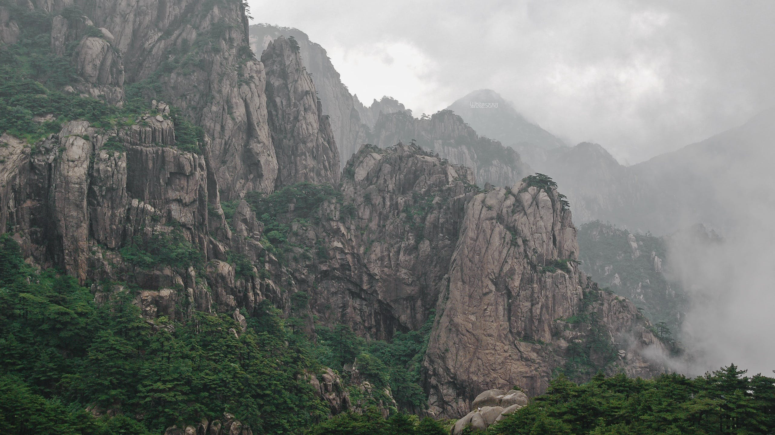 Free stock photo of mountains, rocks, forest, fog