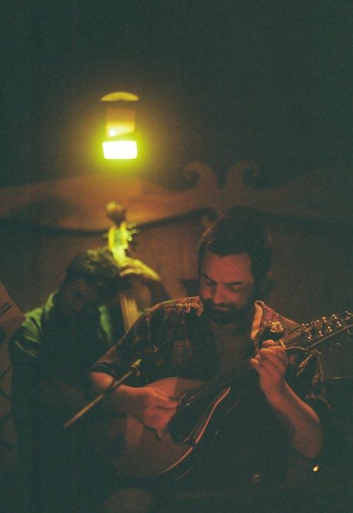 Kostenloses Stock Foto zu jazz, kontrabass, kunst, mandoline