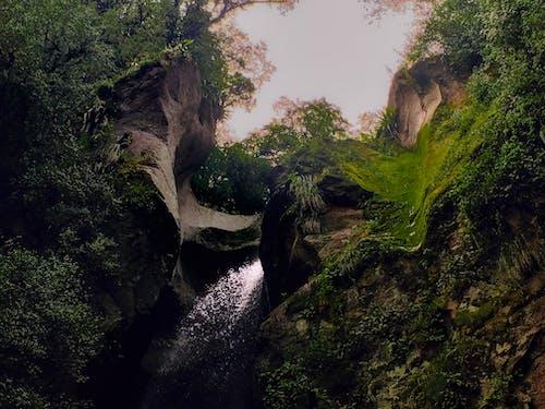 Kostenloses Stock Foto zu fels, grün, natur, stein