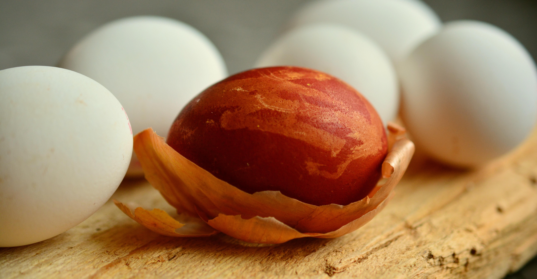 Foto Stok Gratis Tentang Kulit Bawang Mewarnai Telur Paskah Telur