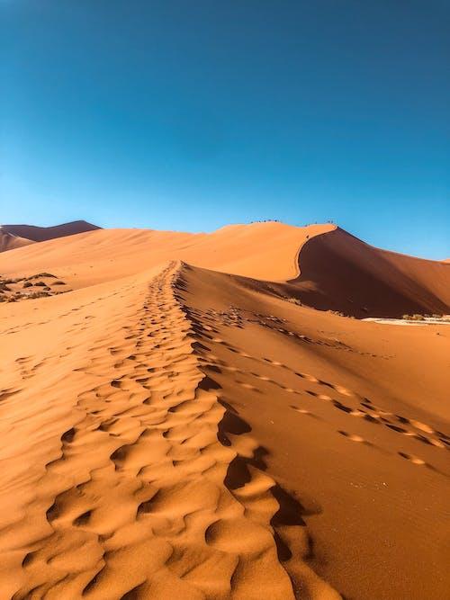 Foto d'estoc gratuïta de Àfrica, alba, atractiu, aventura