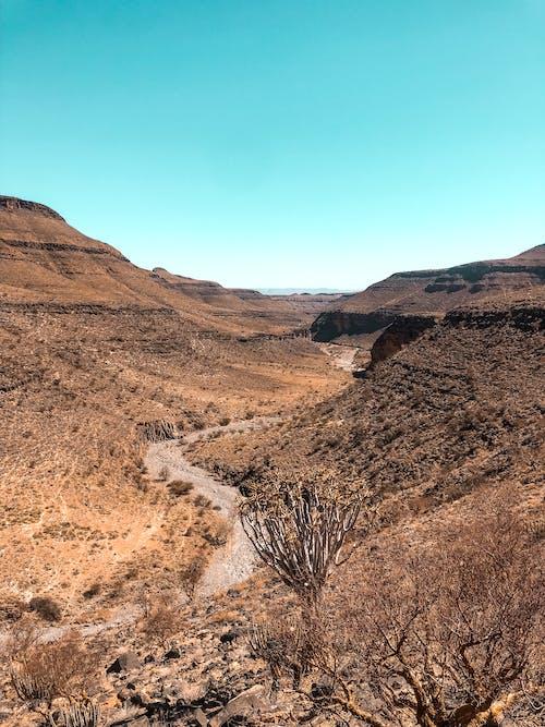 Photos gratuites de afrique, arbres, beau, canyon