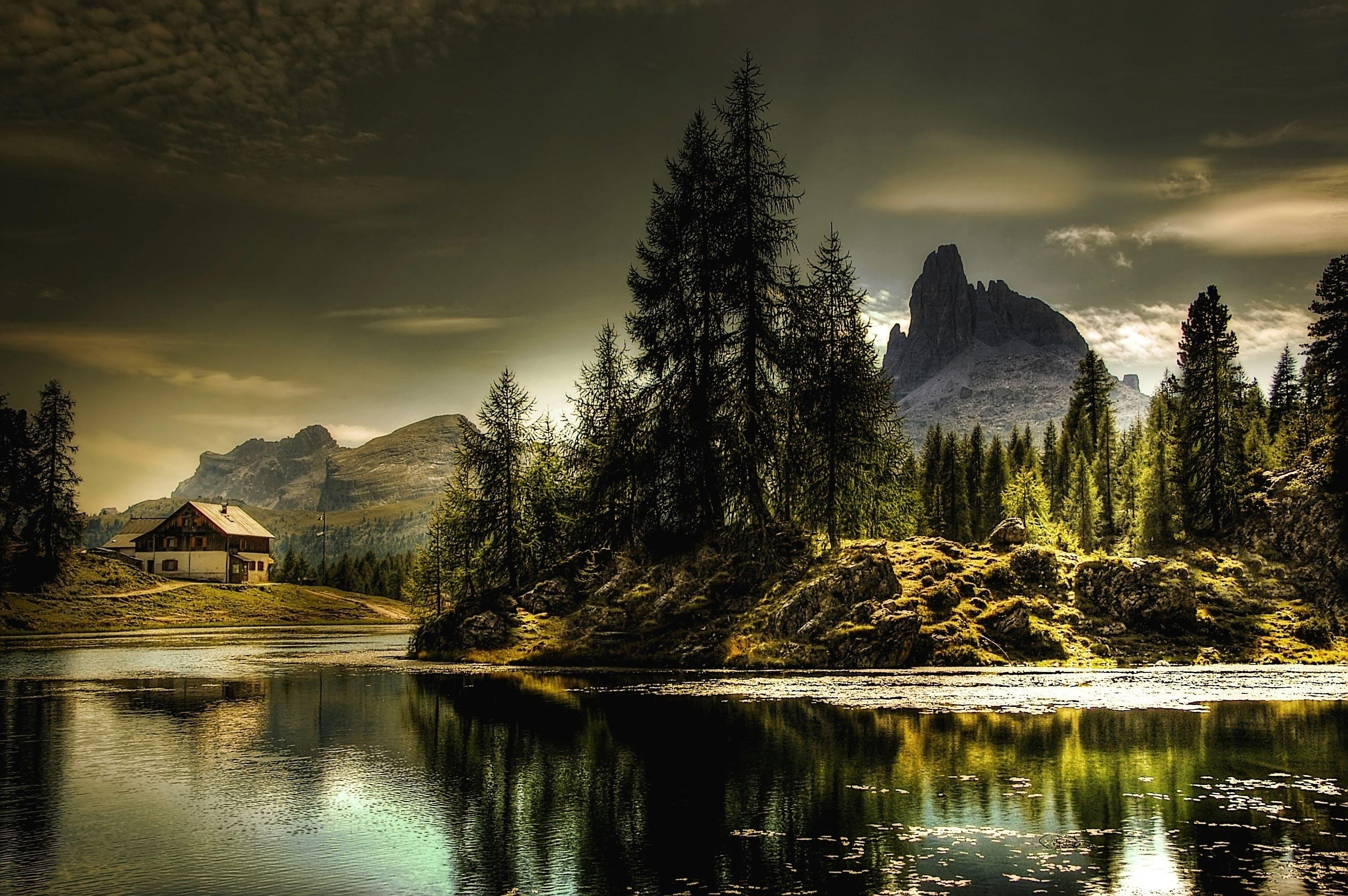 Kostenloses Stock Foto zu alpin, aussicht, bäume, berge