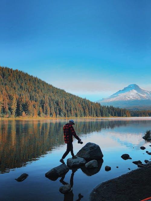 Бесплатное стоковое фото с активный отдых, вода, гора, деревья