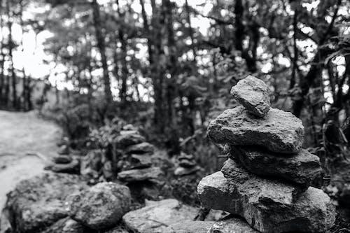 Free stock photo of bhutan, black and white, monochrome