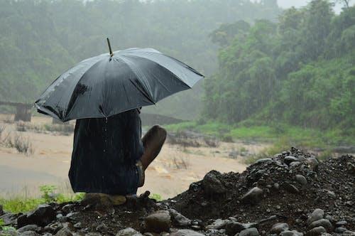 Fotos de stock gratuitas de asiático, belleza en la naturaleza, después de la lluvia