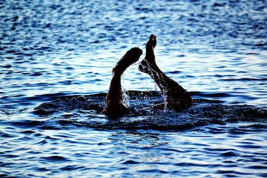 Free stock photo of sea, person, beach, feet