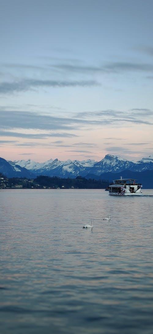 Ảnh lưu trữ miễn phí về alps, chạng vạng, hồ, luzern