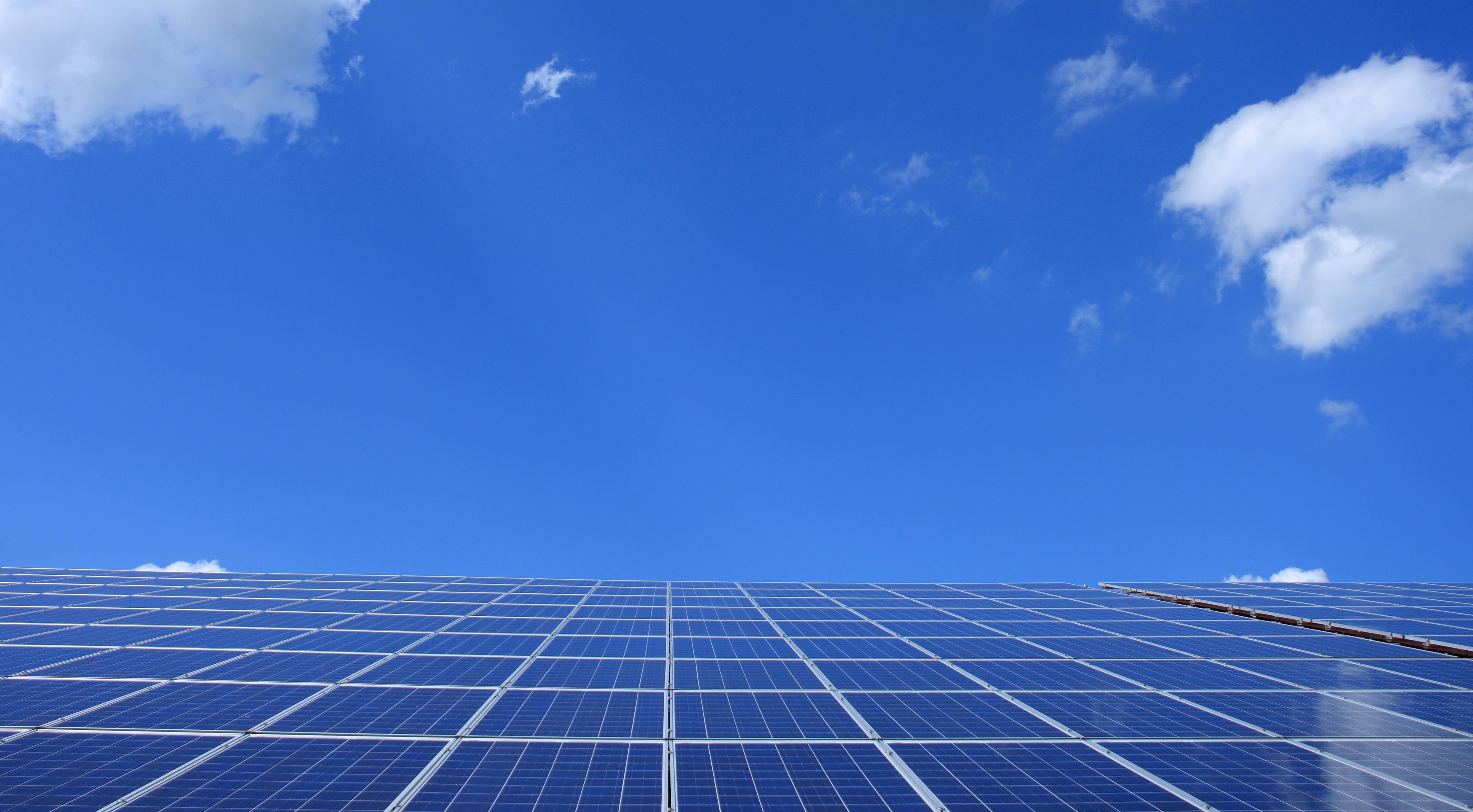 Blue Solar Panels Under Sunny Sky