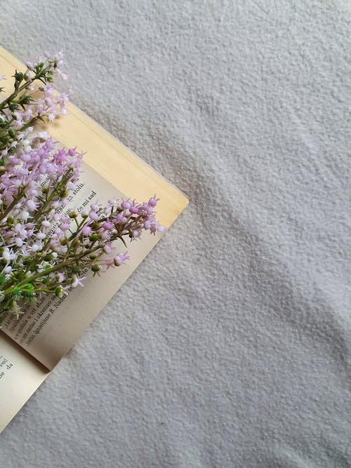 Romantic flowers and book on textile