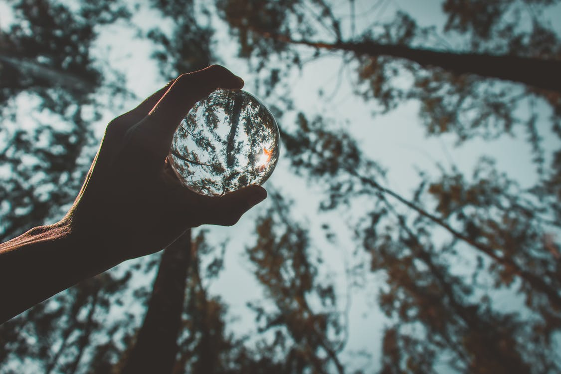 Crop man with reflecting crystal ball in forest