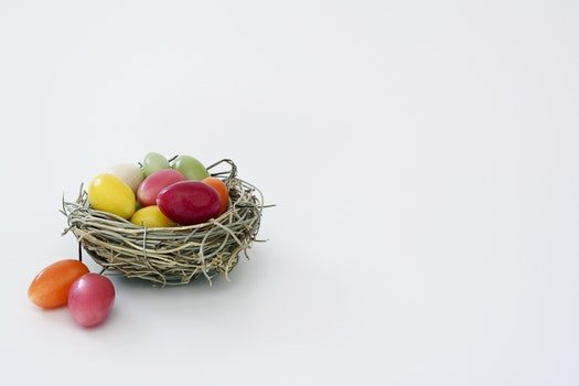 Free stock photo of yellow, colorful, easter, green
