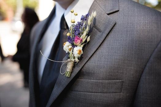 Free stock photo of fashion, man, love, tie