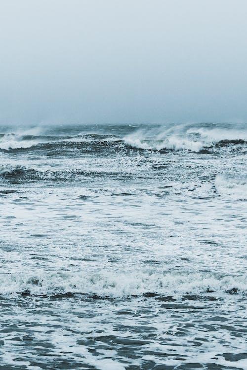 Photos gratuites de bord de mer, cap blanc nez, cap gris nez, ciara