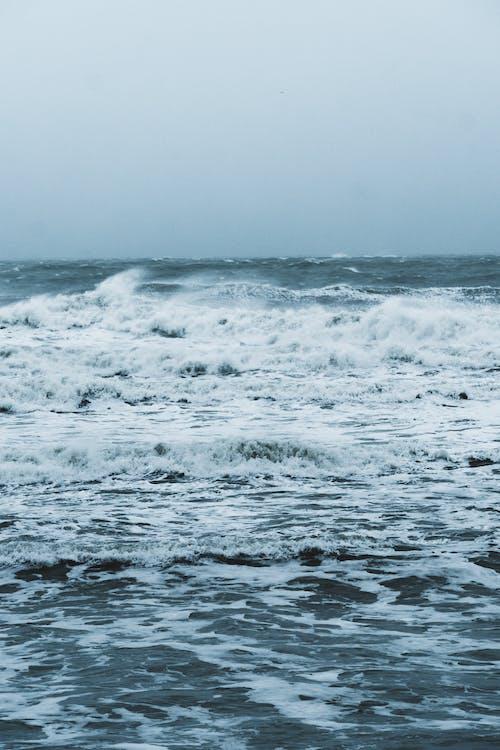 물, 바람, 블랑 네즈 캡, 손을 흔들다의 무료 스톡 사진