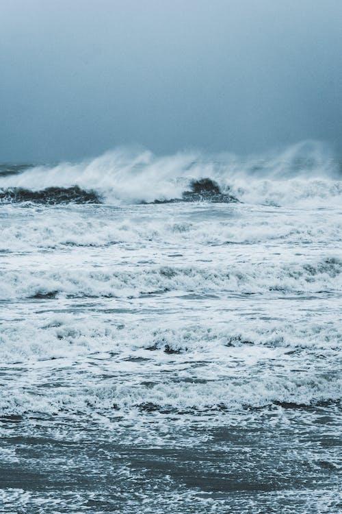 물, 바다, 바다 경치, 블랑 네즈 캡의 무료 스톡 사진