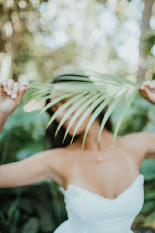 녹색, 모델, 야자나무, 여성의 무료 스톡 사진