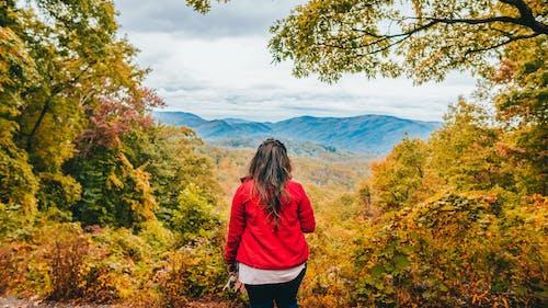 Unrecognizable woman admiring fantastic scenery of mountainous landscape