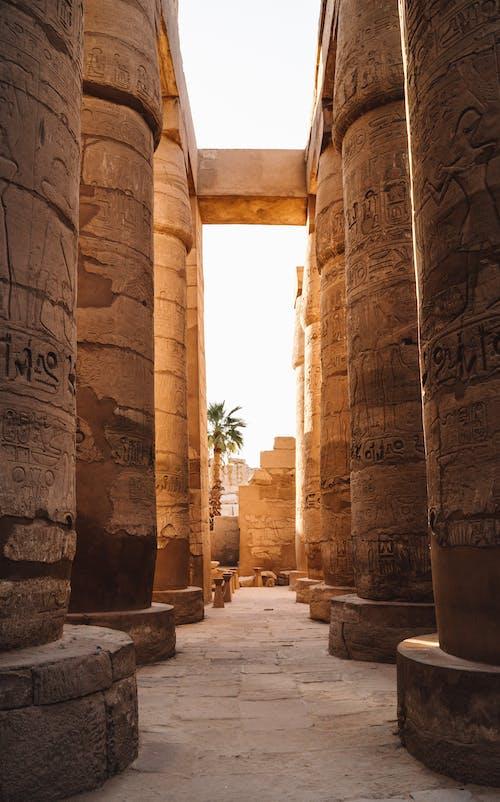Безкоштовне стокове фото на тему «aswan, cairo, luxor»