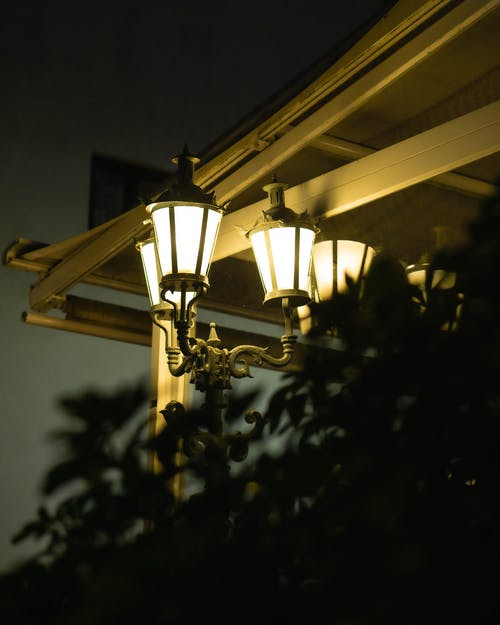 Immagine gratuita di atmosfera serale, cespugli, eveneing, lampada
