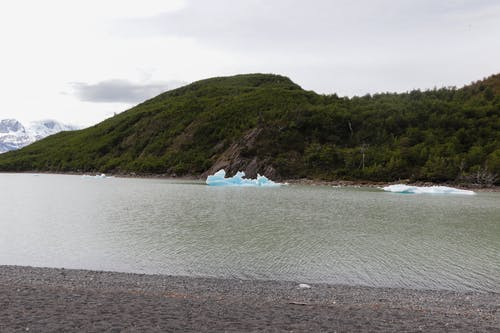 Foto d'estoc gratuïta de aigua, aventura, blau, bosc